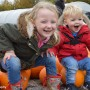 Pumpkin Picking in Devon