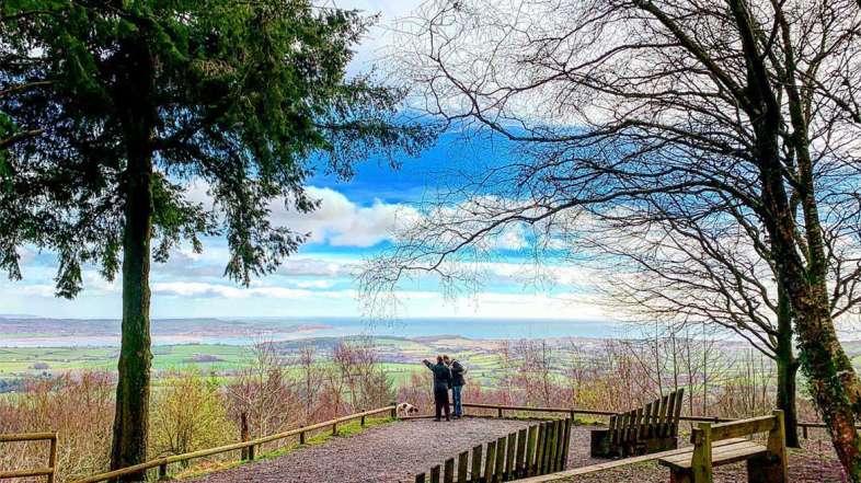 Mamhead Sensory Trail