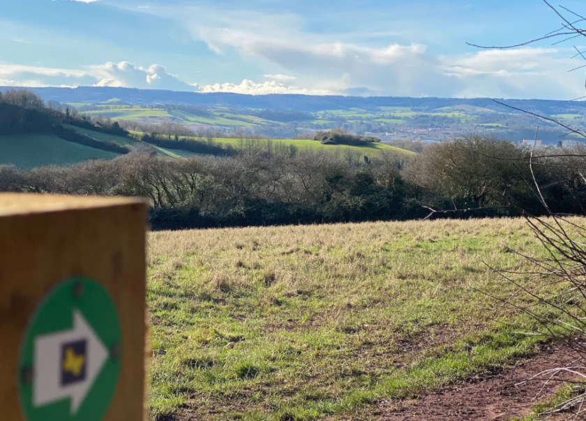 Ludwell Valley Park Walk