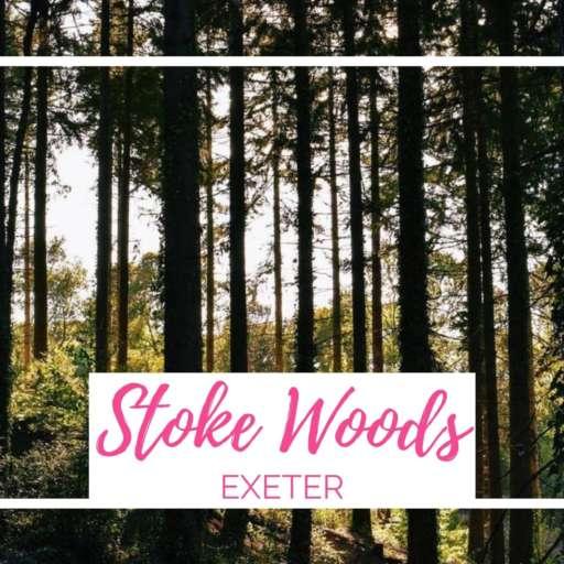 Stoke Woods Walk, Exeter