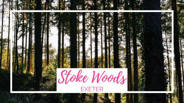 Stoke Woods Walk, Exeter