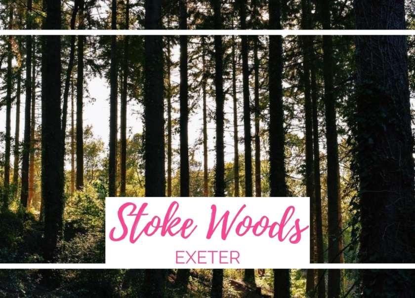Stoke Woods