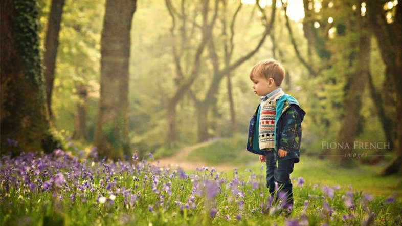 Brilliant Bluebell Beauty Spots in Devon