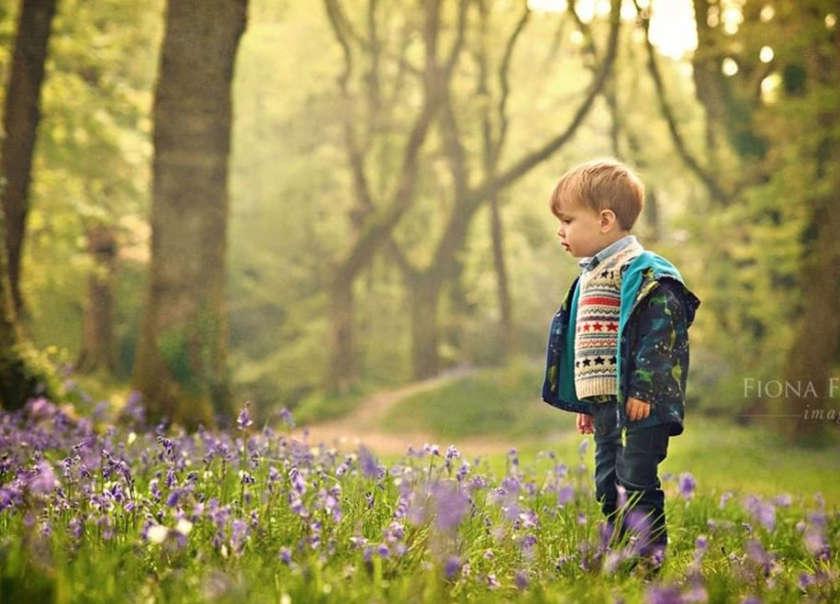 Brilliant Bluebell Beauty Spots in Devon