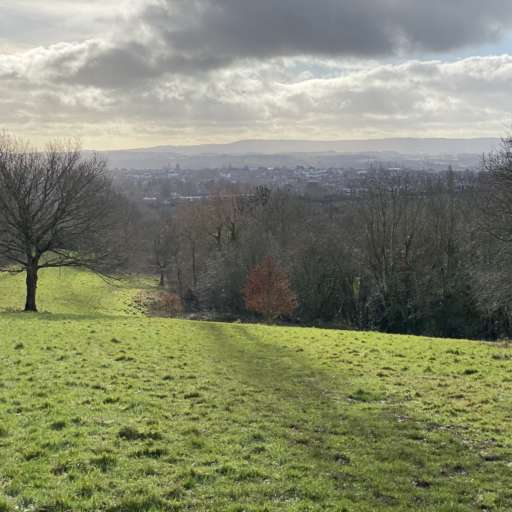 Mincinglake Valley Park