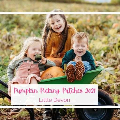 Pumpkin Picking Patches 2021